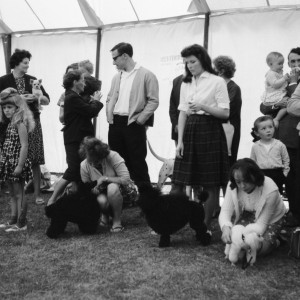 Dog show competitors at the Dagenham Town Show in 1966